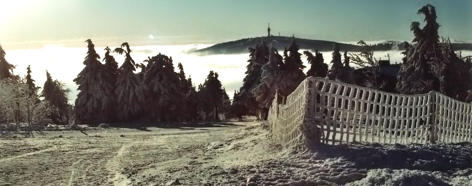 waldquell_winter-1_schmal
