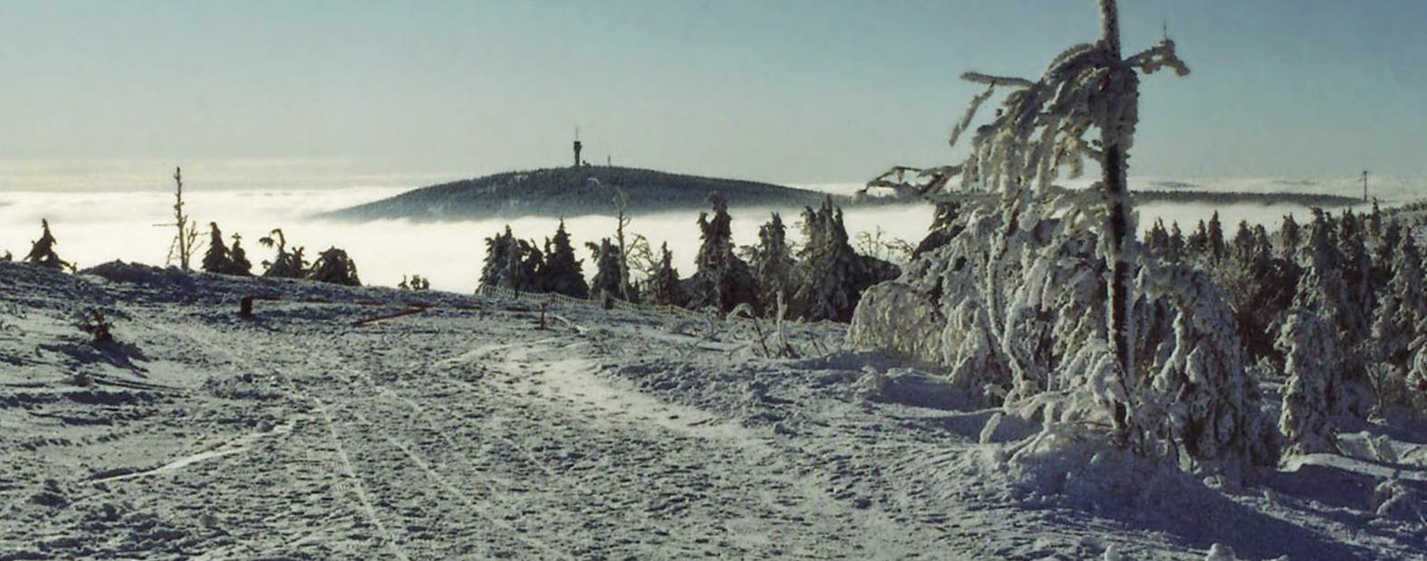 waldquell_winter-3_schmal